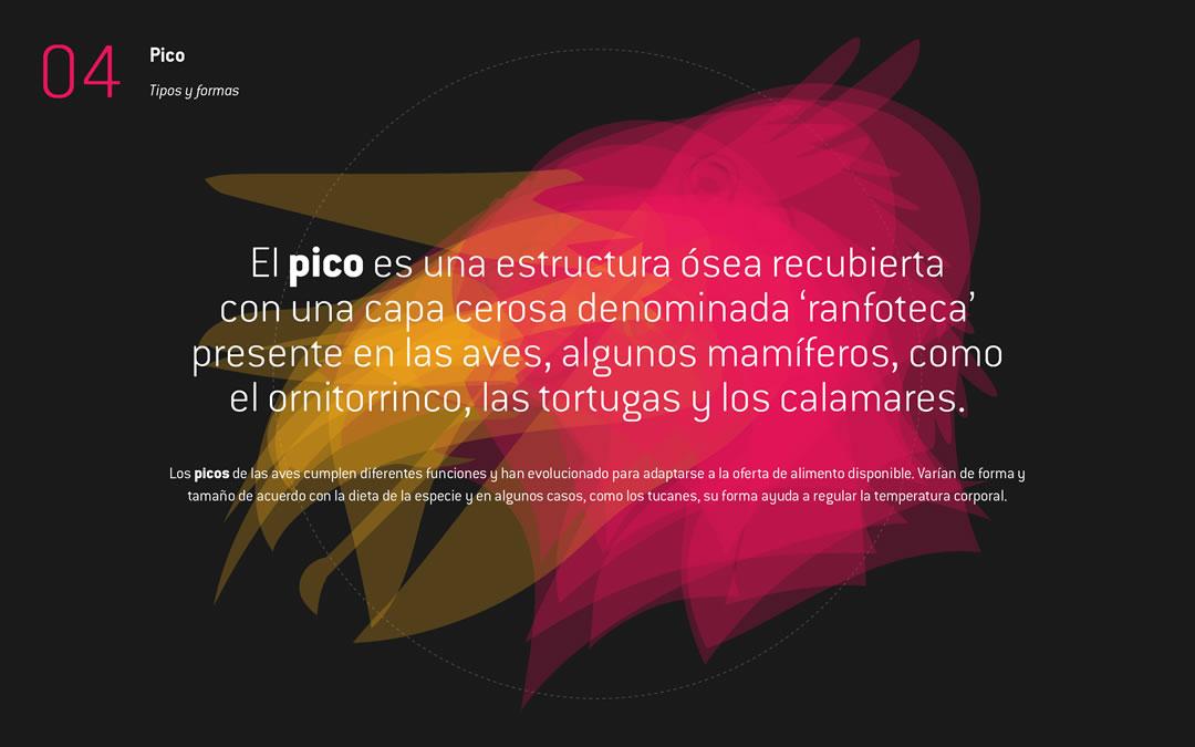 .Puntoaparte recibe el premio Crea Digital